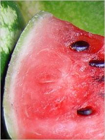Fruit and Vegetable Database : Watermelon Nutrition, Storage, Selection, Preparation: Benefits to Health : Fruits And Veggies More Matters.org