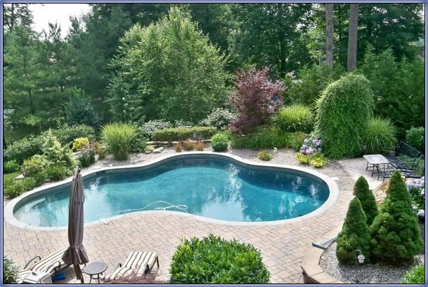 easy landscaping around pools re landscape around the pool with ornamentals perennials and. Black Bedroom Furniture Sets. Home Design Ideas