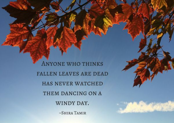 Motivational Monday Fall Quotes