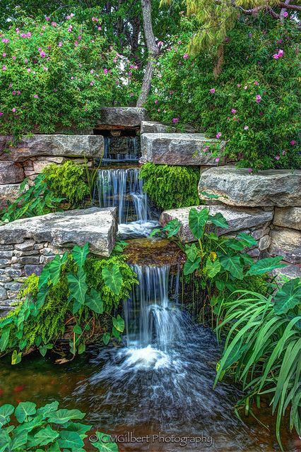 25 Best Images About Botanical Gardens On Pinterest Gardens Cleveland And Organic Gardening