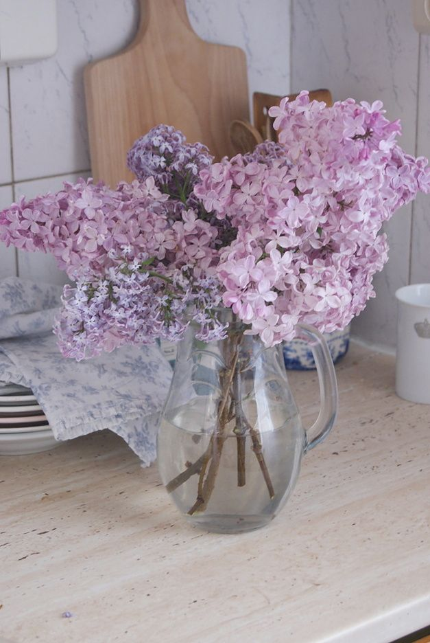 Faded shades of lilac
