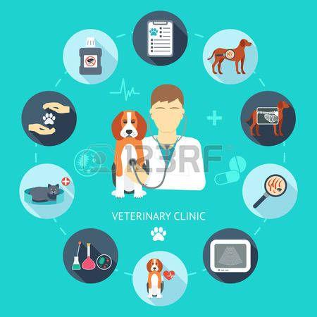 clinica veterinaria: Veterinaria conjunto de iconos plana. Bandera Veterinaria, fondo, cartel, concepto. Clínica veterinaria. Diseño plano. Ilustración vectorial
