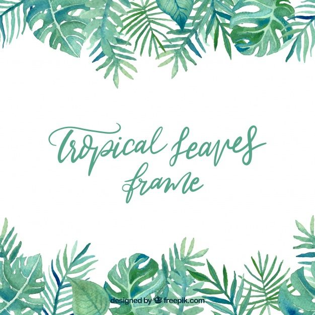 Leaves Frame With Tropical Plants Download Thousands Of Free Vectors On Freepik The Finder With More Than A Million Tropical Plants Tropical Leaves Tropical To get more templates about posters,flyers,brochures,card,mockup,logo,video,sound,ppt,word,please visit pikbest.com. tropical plants tropical leaves tropical