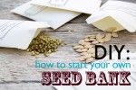 DIY: How to Start Your Own Seed Bank