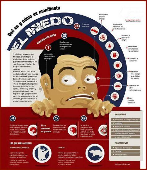 miedo infografia