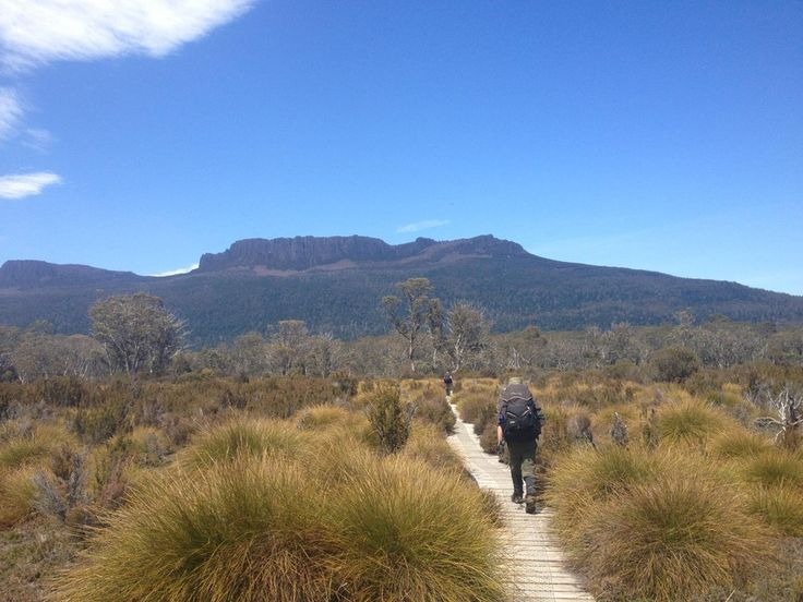 Overland Track Tasmania