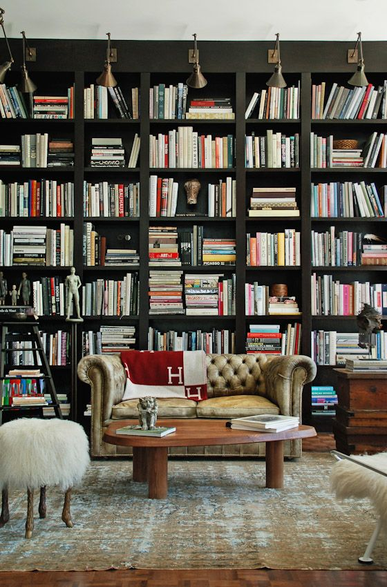 color of bookshelves and light fixtures