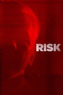 ver Risk (2016) online