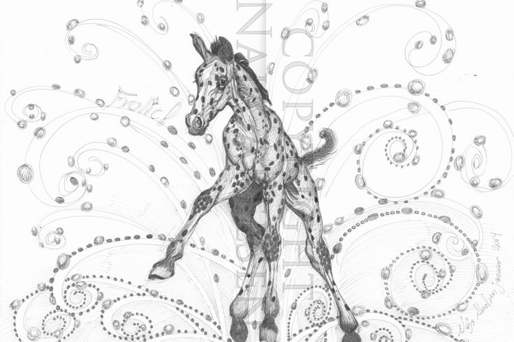 Frolic.  Chinese ink on paper. A3 format. 2014. Every artpiece of horsemotives: a third of the price goes to Kista Abelsens work of rescueing horses.  4.500 kr. / 600 Euro. Soon available as Artprint in A3 to 400 kr / 54 euro. ( The work to be rescanned: note the uneven assembly of two files along the text of my name)