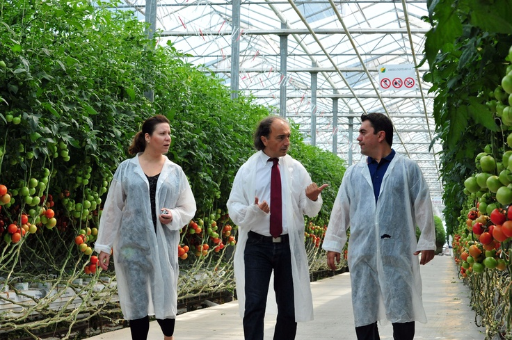 A walk to the Total Greenhouse Management