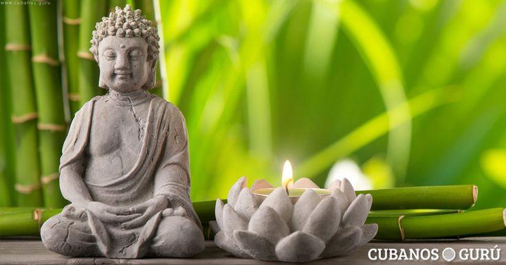 10 consejos básicos del Feng Shui para tu vida diaria #FrasesyPensamientos #casa #consejos #FengShui