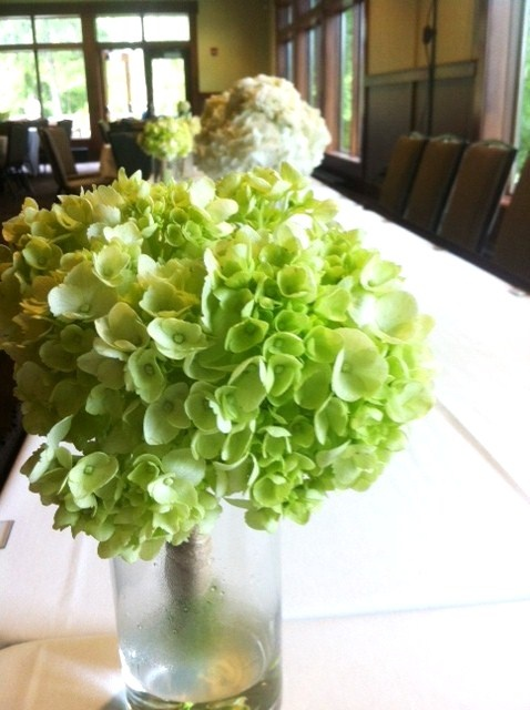 1000 ideas about green hydrangea bouquet on pinterest