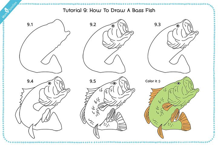 265 best draw aquadic life s by s images on pinterest for Wyoming game and fish draw results