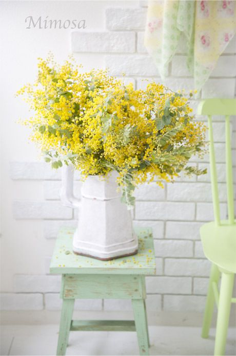 Flowers - Yellow Mimosa via Elizabeth Hanley - found on ameblo.jp Wendy Schultz - Spring - Summer.