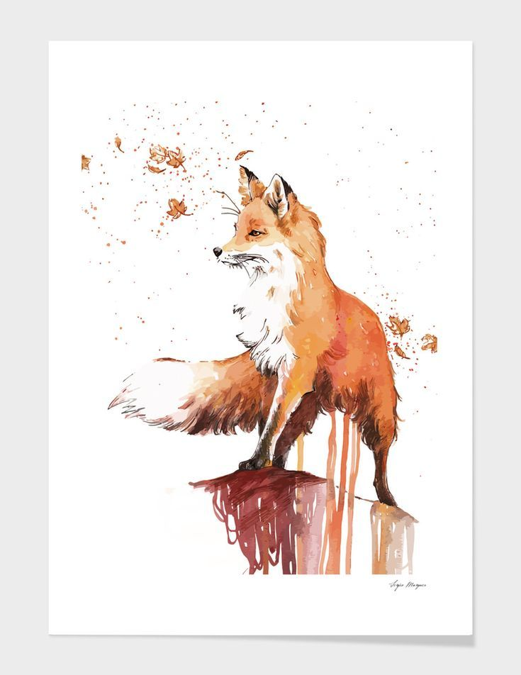Fox Art Print By Sergio Marques Limited Edition From 29 9