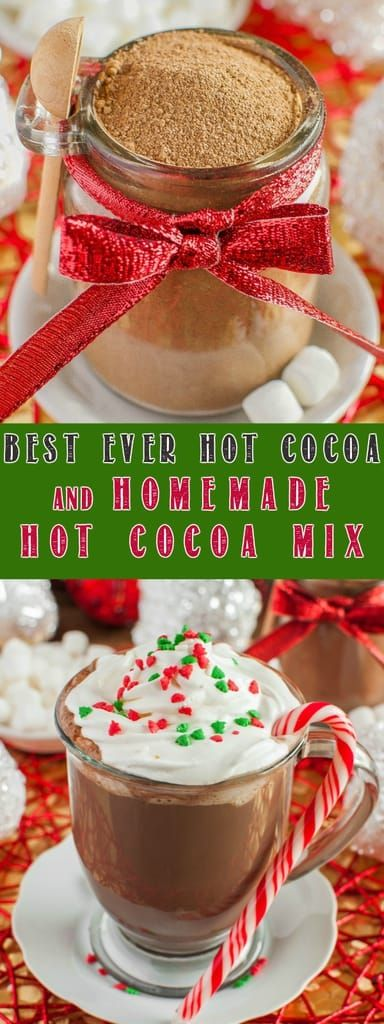 I don't want to sound dramatic, but this is the World's Best Homemade Hot Cocoa Mix!! It makes rich, creamy, perfect hot chocolate. Great gift idea, too! via @BackForSeconds