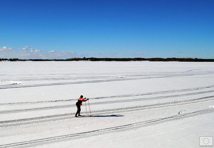 Hiihtäjä Pohjanmaan maisemissa - Kuortane © Saana Kormano, 2014