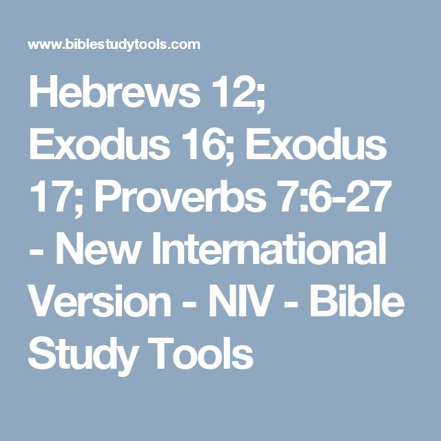 1000+ ideas about Niv Bible on Pinterest | Bible art, Niv ...
