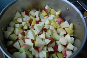 Applesauce 3 pounds cooking apples (a variety is good), cut into ½ inch or 1 inch slices…no need to peel them unless you have an extra hour you want to kill ½ cup apple juice or cider 1 tablespoon fresh lemon juice 1 large cinnamon stick (optional) 1 – 2 tablespoons honey (optional) ¼ teaspoon ground nutmeg