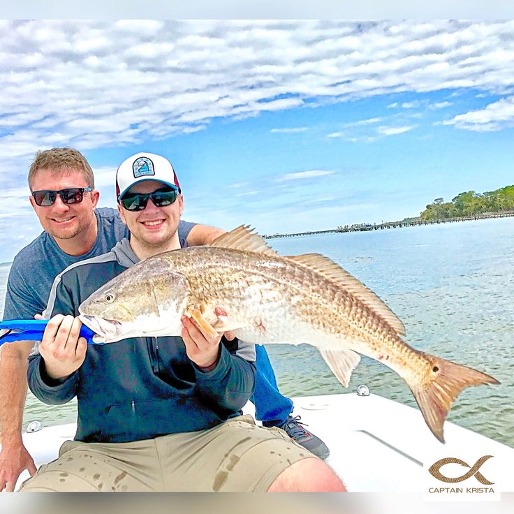 46 best travel st george island images on pinterest for Apalachicola fishing charters