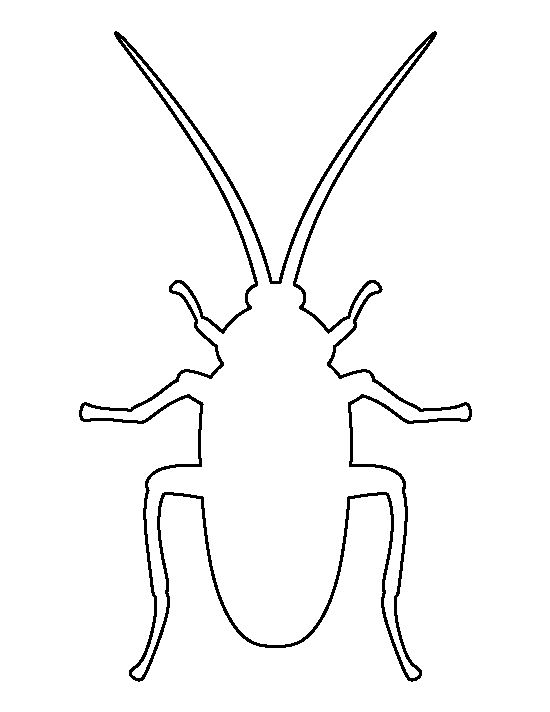 Cockroach Pattern Use The Printable Outline For Crafts Creating Stencils Scrapbooking And