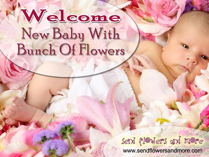 Welcome #New #Baby With Bunch Of #Flowers  Buy online New Baby Born Flowers from SendFlowersAndMore. Send New Baby Flowers for a new born baby boy or girl. Convey your best wishes and blessings to new parents and new baby with beautiful New Baby Flower bouquet from our exotic flower collection.  For More: http://www.sendflowersandmore.com/gifts-flowers-new-baby