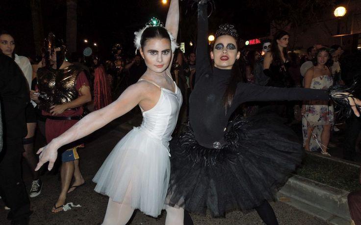 Weißer & Schwarzer Schwan Kostüm selber machen