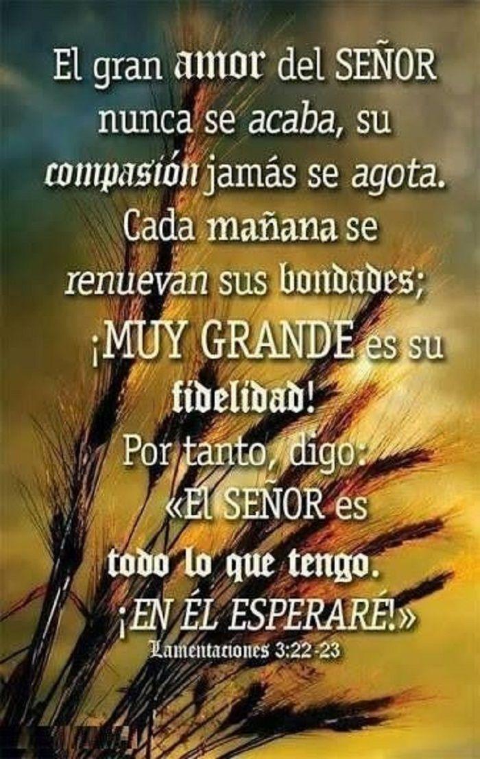 El gran amor del Señor nunca se acaba, su compasión jamás se agota. cada mañana se renuevan sus bondades; ¡Muy Grande es su fidelidad!  Lm 3.22-23