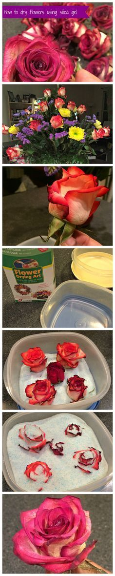 Steps for using silica gel to dry flowers! Super easy and provides a great looking finished product. Recommend for wedding flowers!