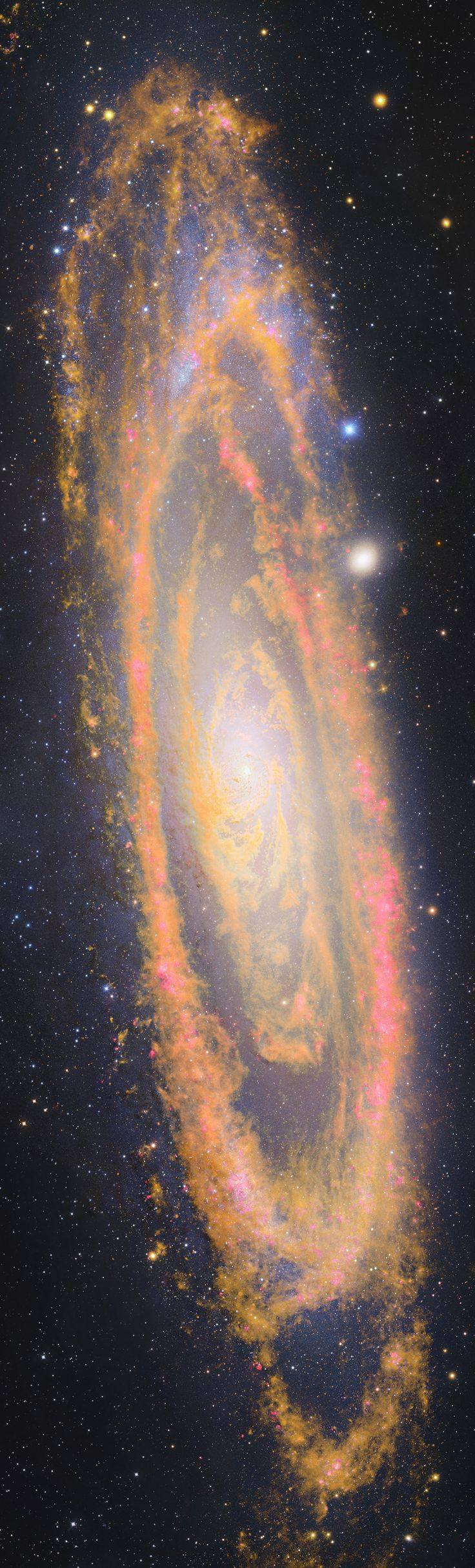 The Andromeda Galaxy (M31) ~ A massive spiral 2.5 million light-years away, over twice the diameter of our own Milky Way, it's the largest nearby galaxy. Andromeda's population of bright young blue stars lie along its sweeping spiral arms. (Spitzer Space Telescope)