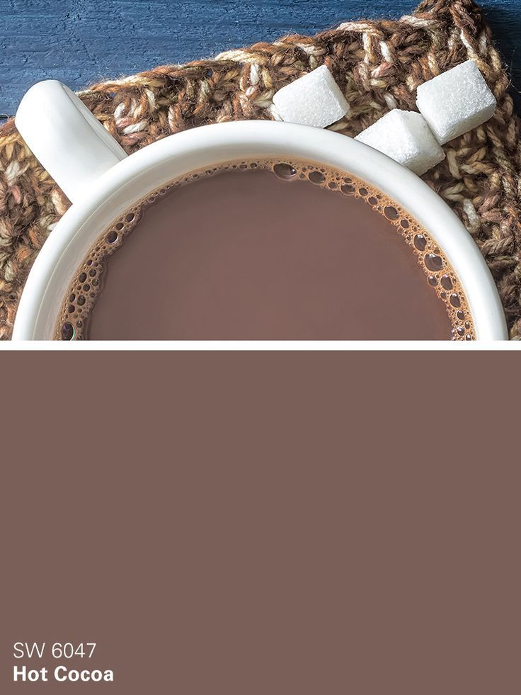 Sherwin-Williams brown paint color – Hot Cocoa (SW 6047)