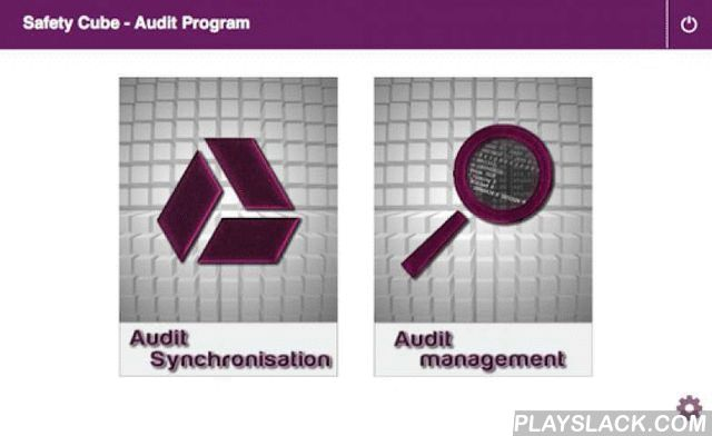 Auditing: Solving 10 problems implementing the NEW risk assessment standards