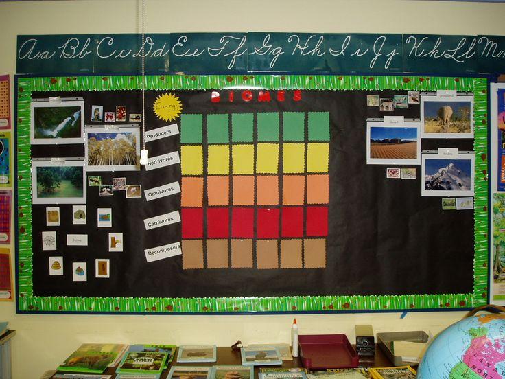 Classroom Interactive Ideas : Interactive bulletin board biomes producers consumers