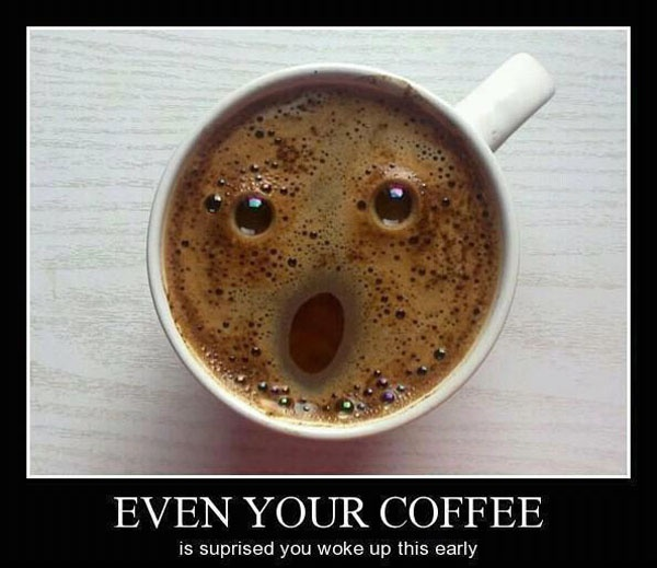 Even Your Coffee is Surprised!Mornings Personalized, Funny Pictures, Mondays Mornings, Coffee, Demotivational Posters, Happy Monday, Funny Animal, Funny Pranks, Animal Funny