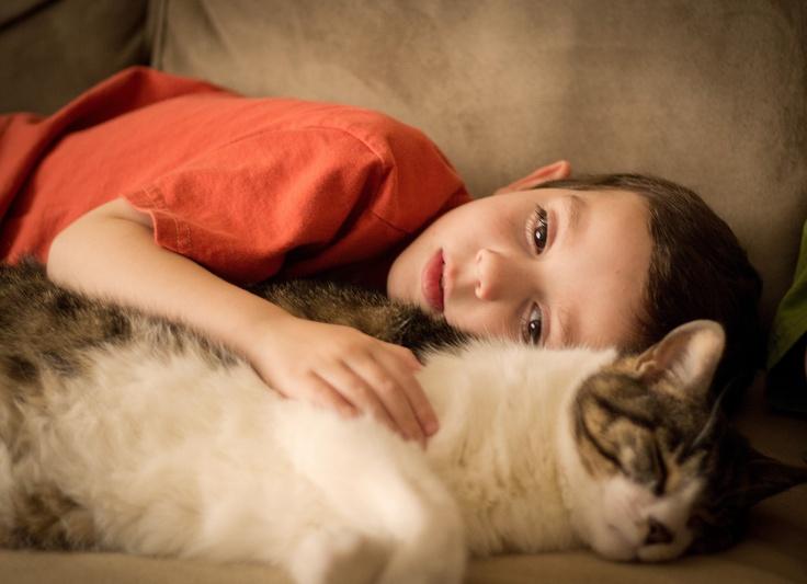 Cat Pillow.