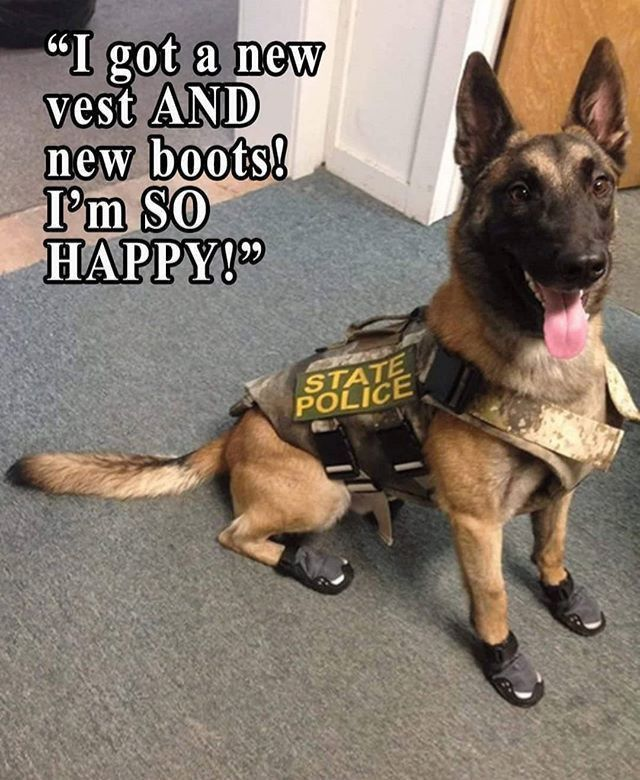 God Bless Protect All Police K9 Heroes Military Dogs K9