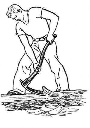 Adze - A tool for working wood: Man using an Adze