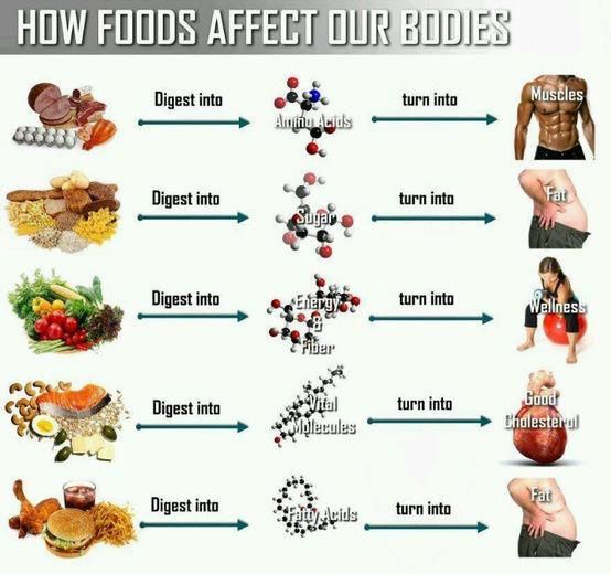 Take back amino acids and junk food on pinterest