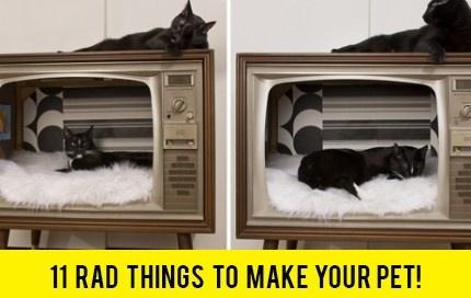 11 Rad Things To Make Your Pet! Thanks @Pablo Ilde Cabeza Lincolne !