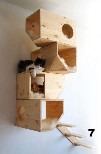 Rascador Y Escalador Flotante Para Gatos