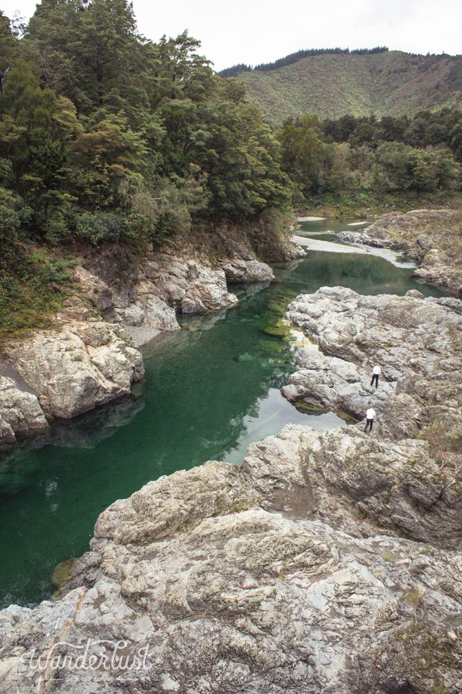The Pelorus River, with water so clear you could see all the way to the bottom!