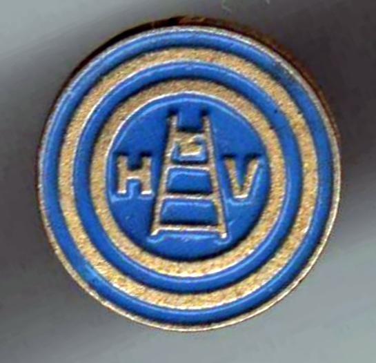 Hellas Verona, anni '90