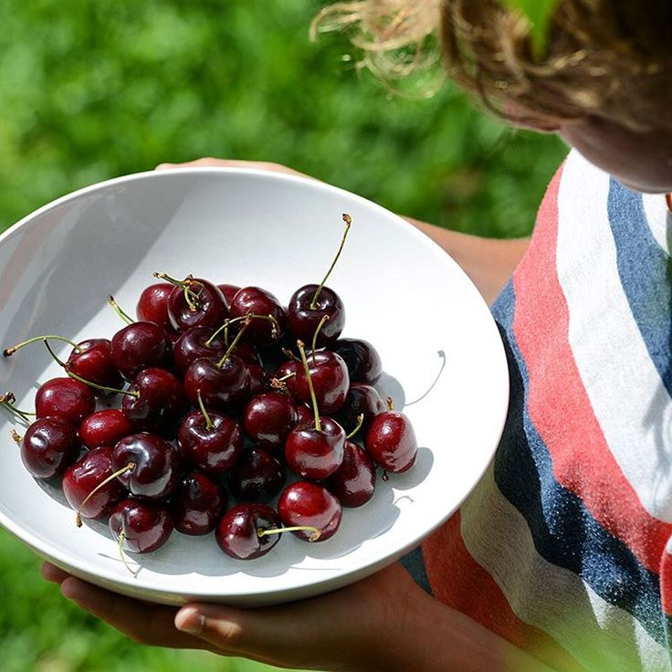 DECEMBER 2015 – We're ready for Christmas... For the absolute best Organic Cherries look out for Cowling Cherries from SA.