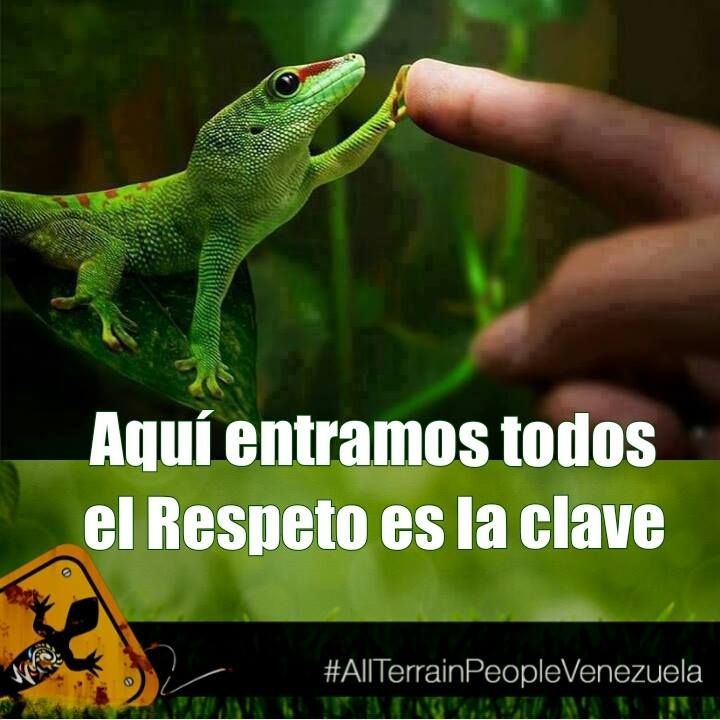 """...el RESPETO es la clave"""" #AllTerrainPeopleVenezuela #respeto #sos #sosvenezuela #venezuela #resistencia #elquepersistevence #venezuelalucha #paz #protesta #imyourvoicevenezuela #cnnee #elquesecansapierde #progreso #derechoshumanos #tiraniadevenezuela #soytuvozvenezuela #indignados #liberenaleopoldo #represión #estudiantes #prayforvenezuela #dictadura #sinarmas #amor #justicia"""