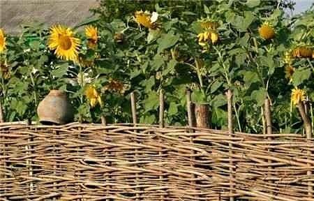 Плетень в деревенском стиле