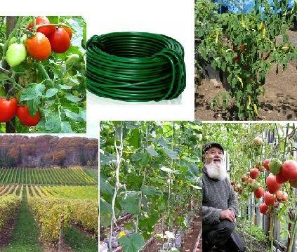 Жгут для подвязки растений, помидоров, огурцов, винограда перца.