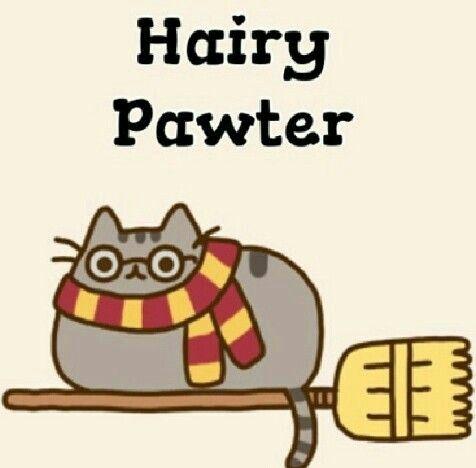Hairy Pawter so cute