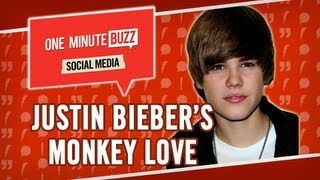 "SUBSCRIBE to CELEBUZZ! : http://celeb.bz/TnVefW  Justin Bieber released an instagram photo of a rather unusual furry friend...a monkey named OG? Apparently the German authorities would not allow the singer to leave with him - sorry, Justin. Snoop Lion also posted a photo of himself...napping. Wonder what made him so tired?  Rosie O'Donnell tweeted a surprising flattering remark to Drake, calling him cute? Drake called Rosie's remark ""the best feeling ever"" in his Tweet back. Also Tweeting is…"