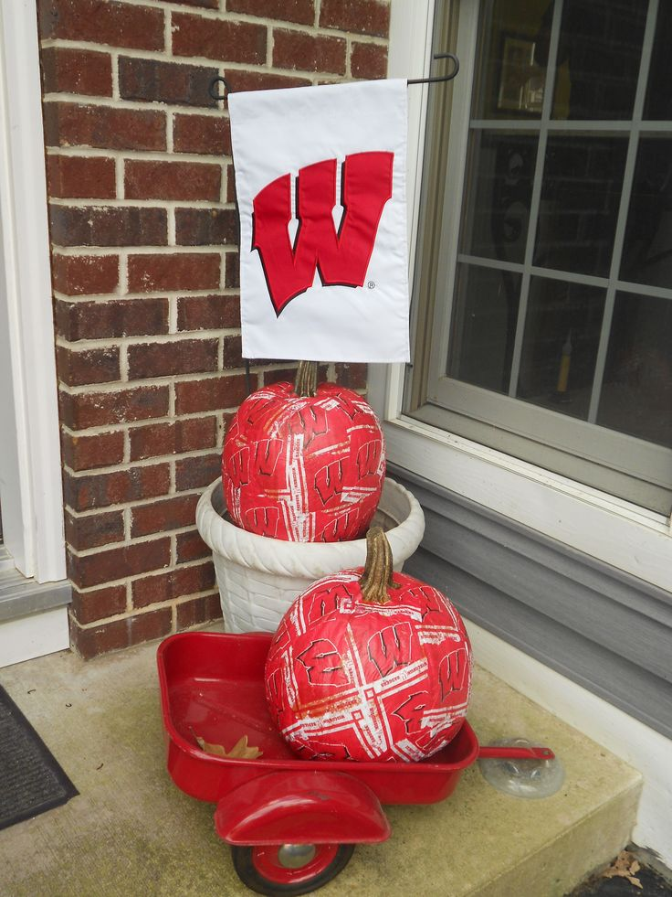 51 best images about badger game day on pinterest for Badger christmas decoration