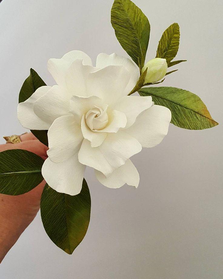 "Crepe paper botanical - Lynn Dolan (@lmdolan75) on Instagram: ""Gardenia portrait."""